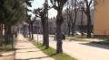 Ruszyła przebudowa ulicy Sienkiewicza.