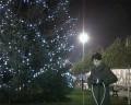 Bożonarodzeniowa choinka na Placu Jana Pawła II
